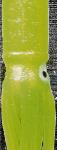Fluorescent appâts en plastique